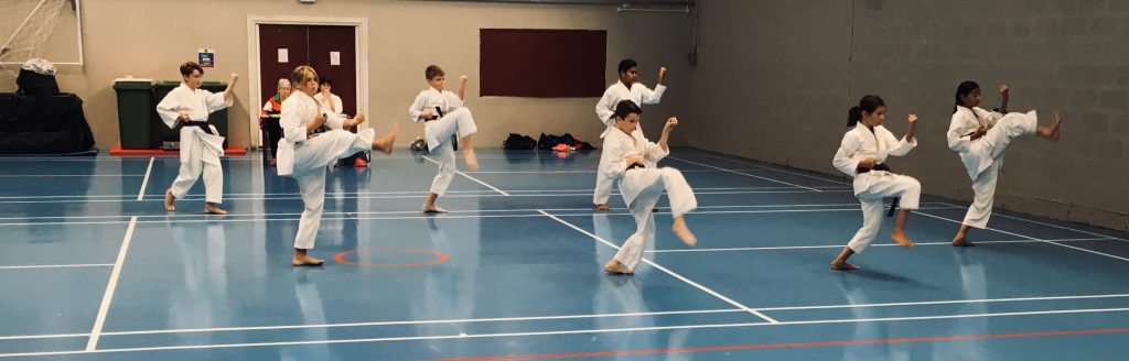 St Clears Karate Club
