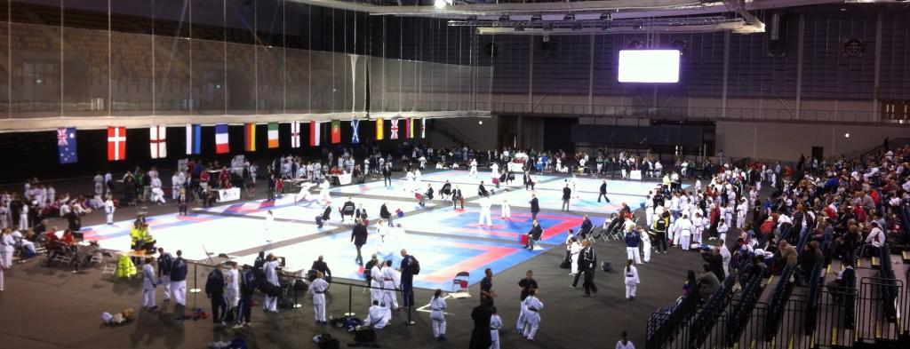 British International Open 2013