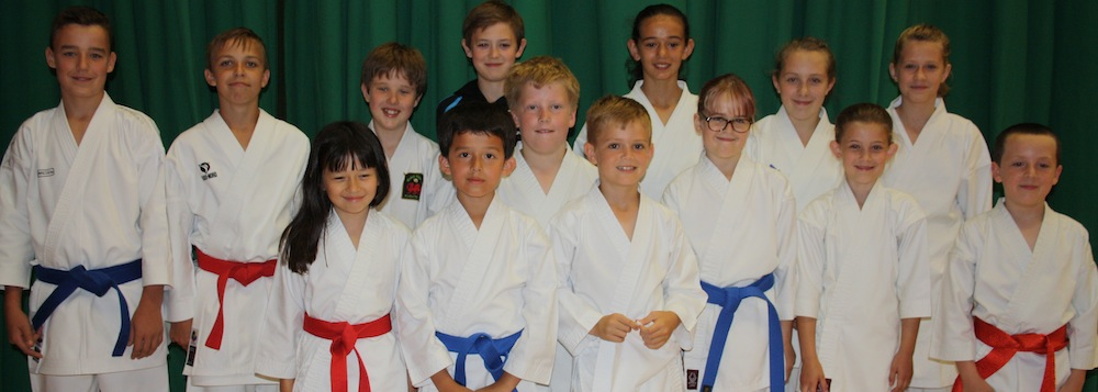Carmarthenshire Karate Team at the Welsh Junior Open