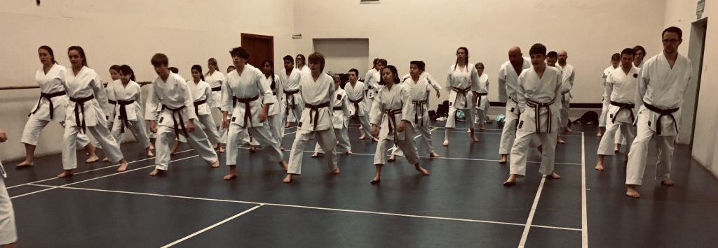 Narberth Karate Club