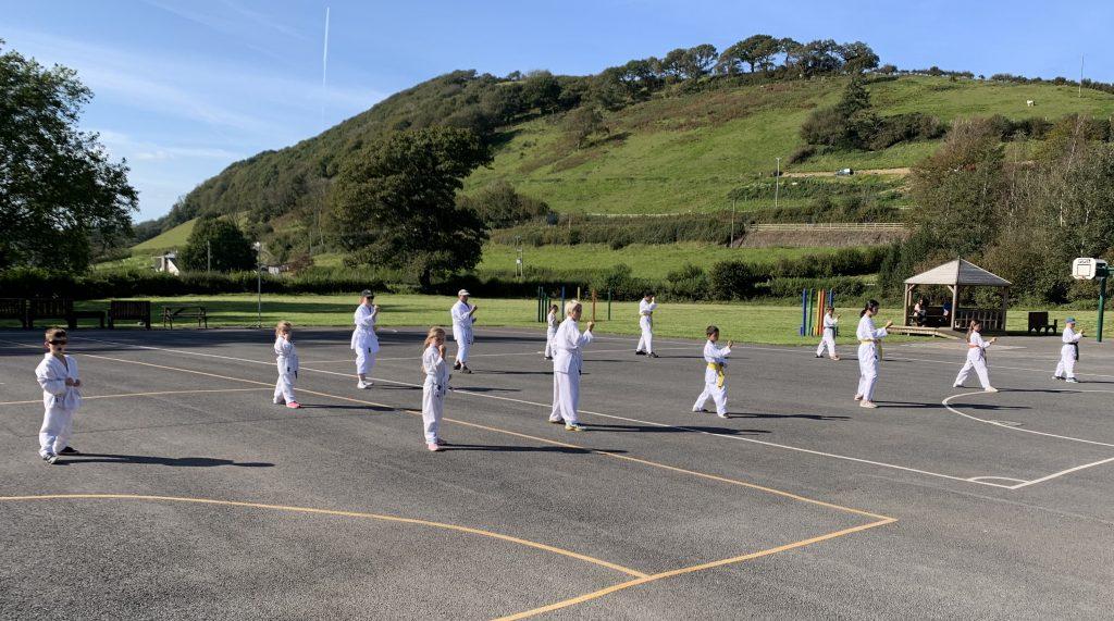 Carmarthenshire Karate Grading September 2020